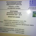 ΚΔΗΦΑμεΑ ΘΡΑΨΑΝΟ-LEADER
